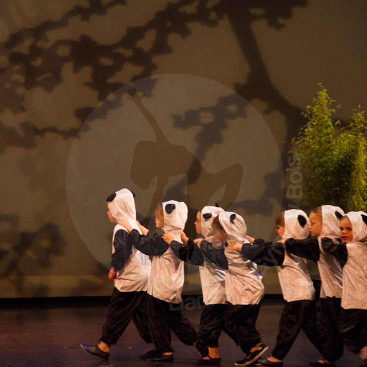 Gala danse 2014 - Danse & Gym du Bois